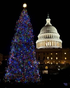 Lava Room Recording Shares a Christmas Wish and the Christmas Tree in Washington, DC